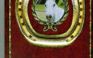 Horse Shoe Plaque Gold
