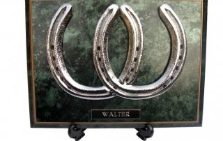 Horse Shoe Plaque chrome