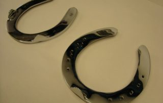 Polished Chrome Horse Shoe