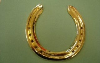 Polished Gold Horse Shoe