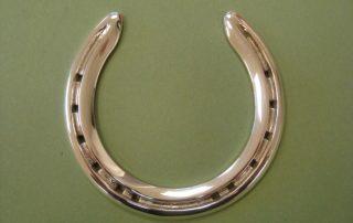 Polished Silver Horse Shoe