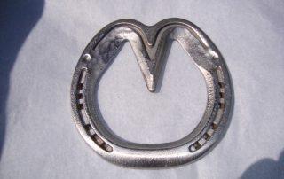 Satin Horse Shoe