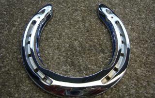 Chrome Horse Shoe